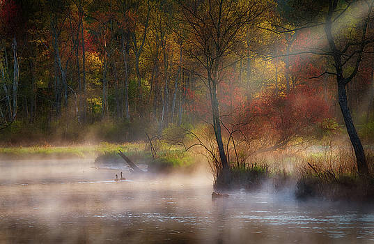 Peaceful Spring Morning by Bill Wakeley
