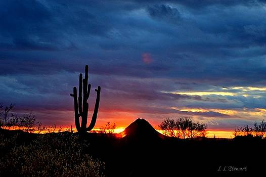 Peaceful Sunset by L L Stewart