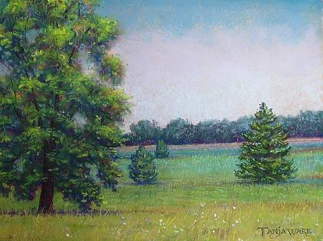 Peaceful by Tanja Ware