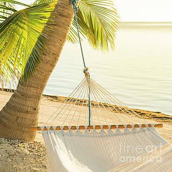 Tim Hester - Peaceful Vacation Hammock