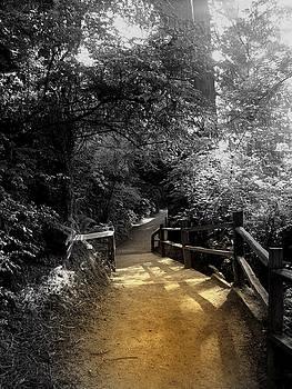 Peaceful Walk by Rick Mutaw