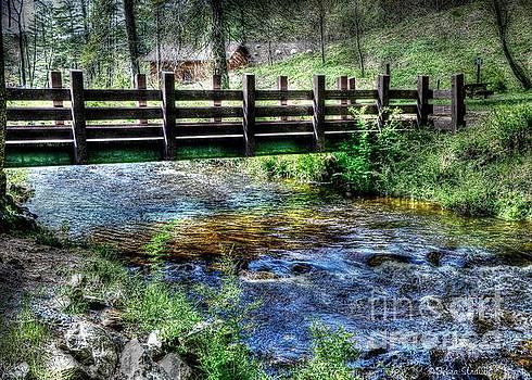 Peaceful Waters by Debra Straub