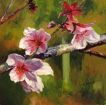 Lea Novak - Peach Blossom Time