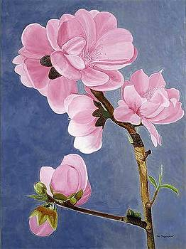 Peach Flowers No 2 by Thi Nguyen