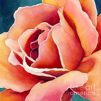 Hailey E Herrera - Peach Rose
