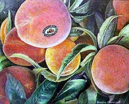 Peaches by Bonnie Haversat
