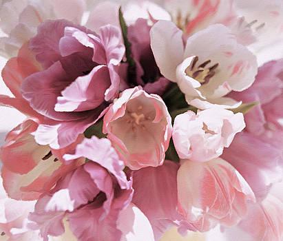 Peachy Pink Tenderness by Georgiana Romanovna