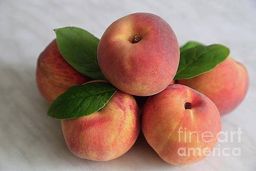 Peachy by Tracy Hall