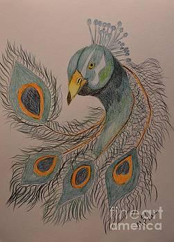Maria Urso - Peacock #1 - Drawing