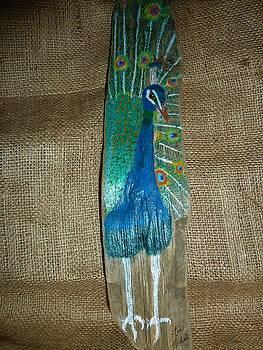 Peacock by Ann Michelle Swadener