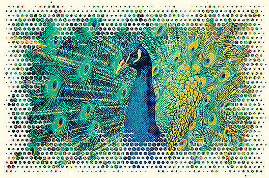 Angela Doelling AD DESIGN Photo and PhotoArt - Peacock Art