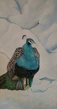 Peacock in snow by Joan Mansson