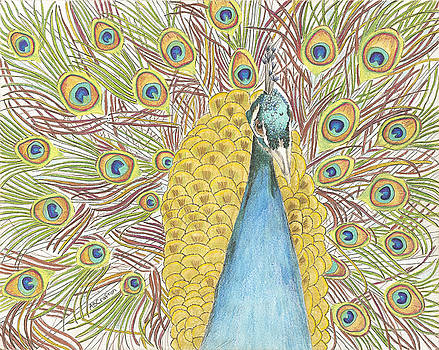 Peacock One by Arlene Crafton