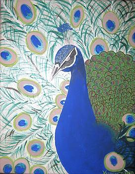 Peacock proud by Veronica Trotter