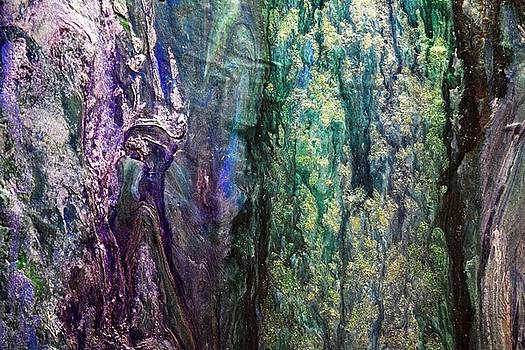 Peacock Rain by Willie Scaife
