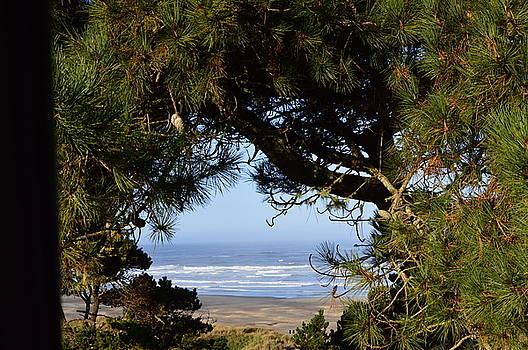 Peak-a-boo Beach by Sue Houston