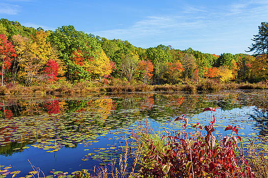 Peak Autumn Foliage Reflections at Greystone Pond, Plymouth Connecticut by Skyelyte Photography by Linda Rasch