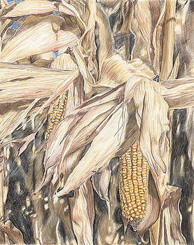Peal of Harvest by Tosha Wise