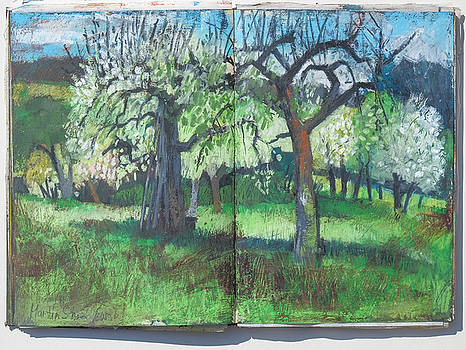Martin Stankewitz - pear and apple trees, oil pastel landscape