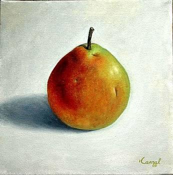 Pear by Kamal Bhandari