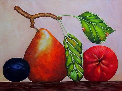 Pear, Plum, Apple II by Carol Sabo