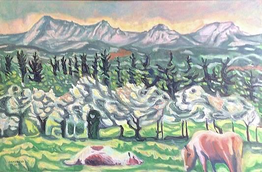 Pear Trees by Enrique Ojembarrena