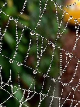 Pearls of Ife by Sharon Joubert