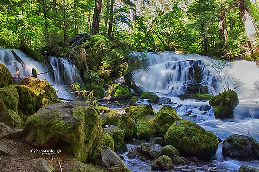 Pearsony Falls by John Heywood
