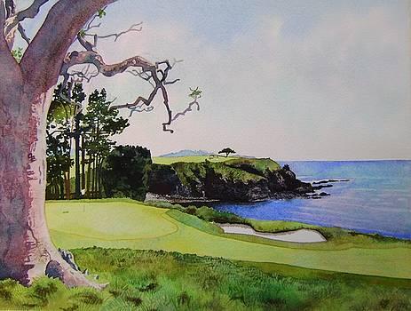 Pebble Beach gc 5th hole by Scott Mulholland