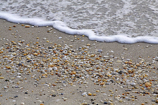 Pebbled Beach by Kelly S Andrews