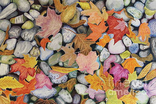 Pebbles and Leaves by Jackie Kirby