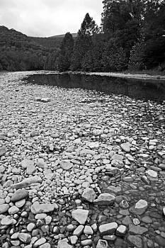Pebbles and Pond Monongahela National Forest by Kristen Vota