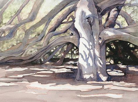 Pechanga Great Oak by Bonnie Rinier