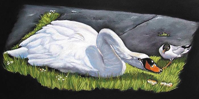 Pecking Order by Vanda Luddy