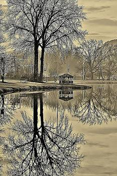 Pecks Pond in Sepia 2 by Thomas McGuire