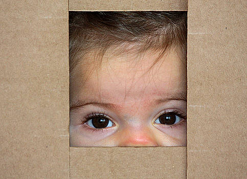 Peek-A-Boo by Sheila Brown