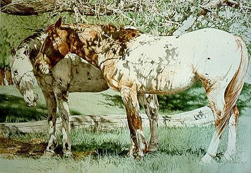 Peepers Ponies by Judith Angell Meyer