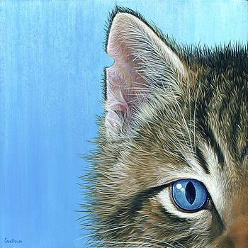 Peeping Tom II by Cara Bevan