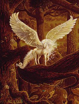 Pegasus by Steve Roberts