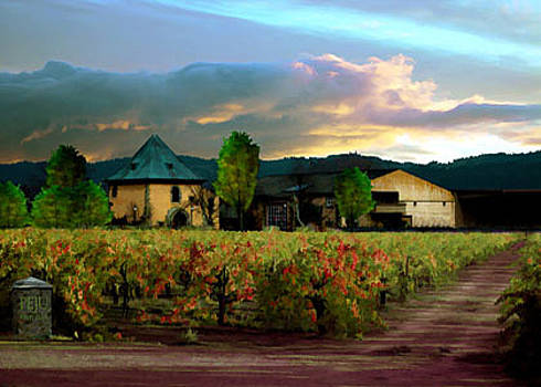 Peju Winery Napa by Paul Bailey