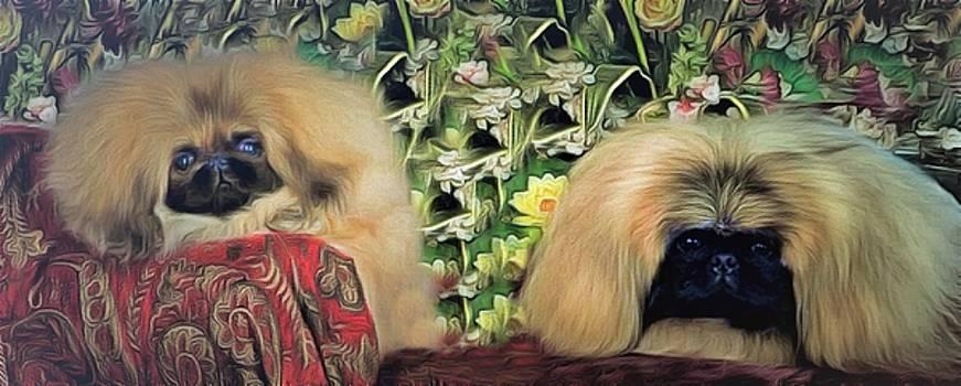 Pekingese And Pup by Janice MacLellan