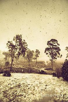 Pelham Snowstorm by Jorgo Photography - Wall Art Gallery