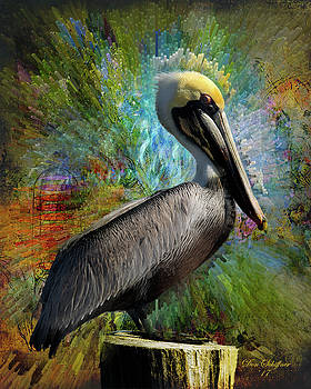 Pelican Colors by Don Schiffner