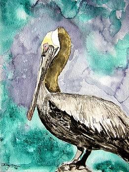 Pelican by Derek Mccrea