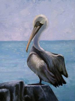 Pelican III by Wendie Thompson