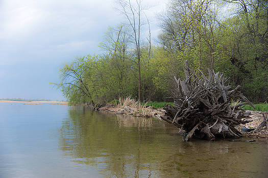 Melinda Martin - Pelican Lake