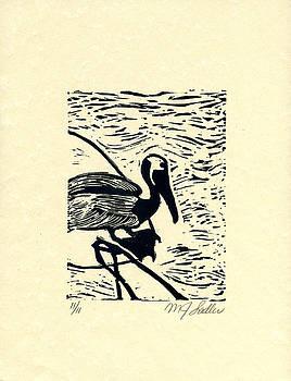 Pelican by MJ Sadler