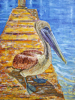 Manuel Lopez - Pelican Original Oil Painting 30