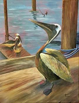 Pelican Pride by Jane Ricker