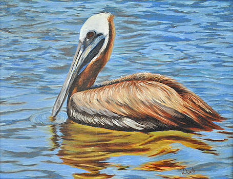 Pelican Reflections by Darla Brock